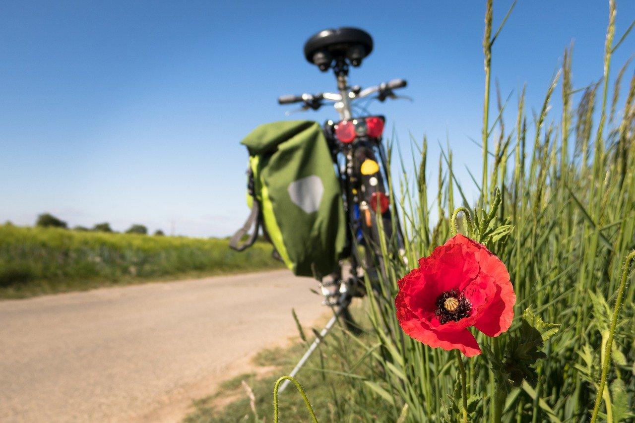bicicletta Emilia